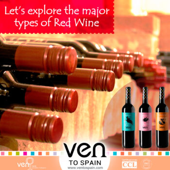 Let's Explore the Major Types of Red Wine