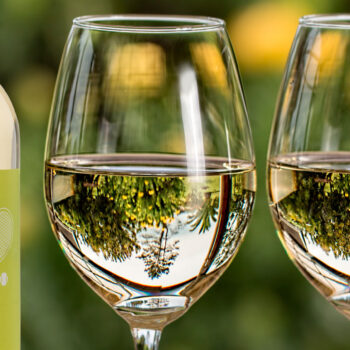 Understanding Color Differences in White Wine