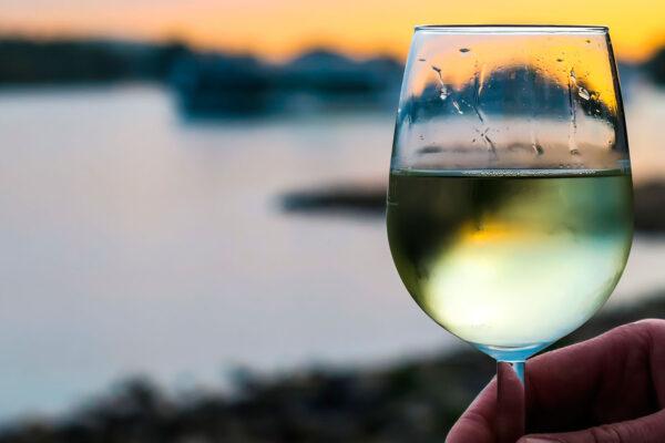 Best Serving Temperature for Wine