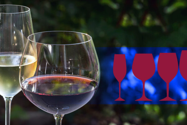 Types of Wine Glasses: Learn How to Choose the Best Suiting Wine Glass