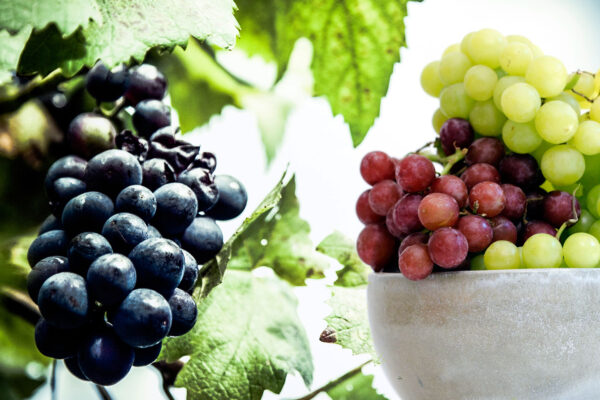 Facts You Probably Don't Know About Grapes